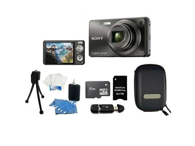 Sony Cyber-Shot DSC-W290 12.1 MP 5X Optical Zoom Digital Camera + Accessory Kit