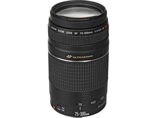 Canon EF 75-300mm f/4-5.6 III USM Telephoto Zoom Lens (Bulk Packaging)