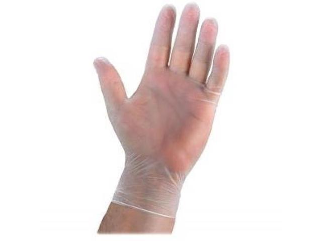 Disposable Gloves Ltly Powdered Med. 100/BX Vinyl/CL