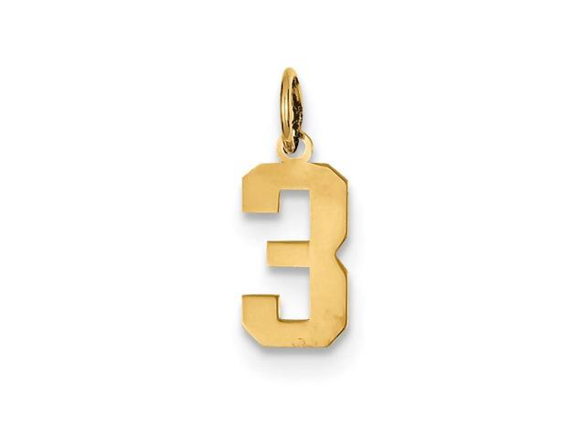 14k Yellow Gold Small Polished Number 3 Charm Pendant