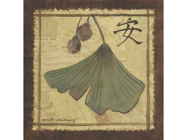 Ginko Leaves II Poster Print by Anita Phillips (24 x 24)
