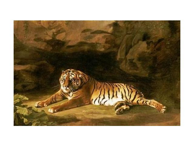 Portrait of The Royal Tiger Poster Print by  George Stubbs  (12 x 18)
