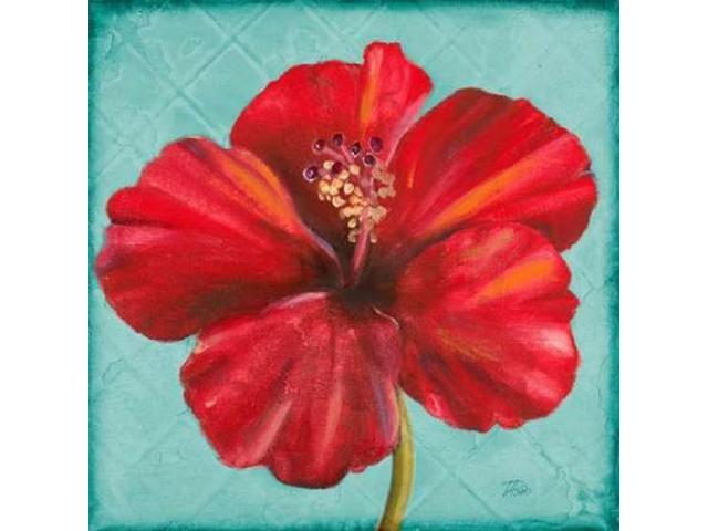Joyful Hibiscus Poster Print by Patricia Pinto (12 x 12)