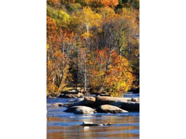 Autumn on the River I0 Poster Print by Alan Hausenflock (10 x 14)