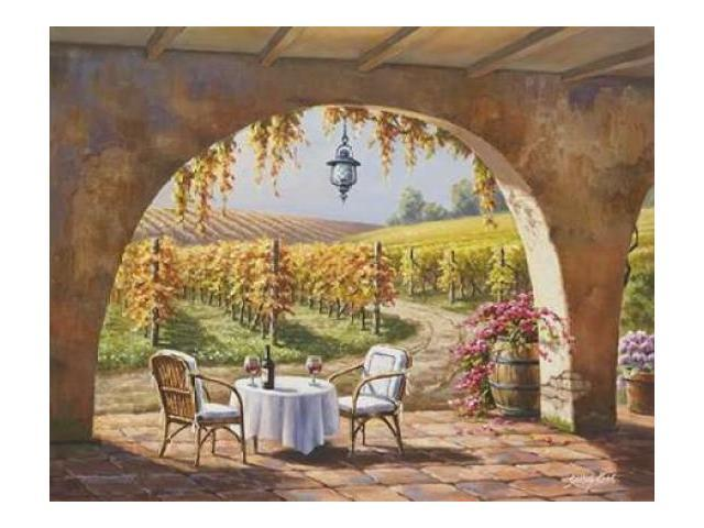 Vineyard for Two Poster Print by Sung Kim (22 x 28)