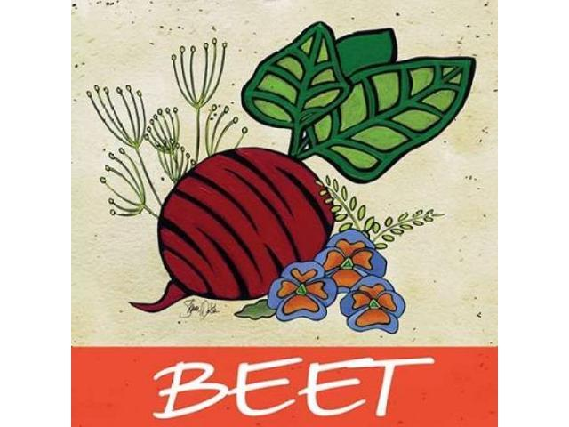 Beet Poster Print by Shanni Welsh (24 x 24)