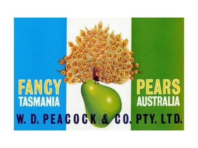 Peacock Pears Poster Print by Retrolabel  (12 x 18)