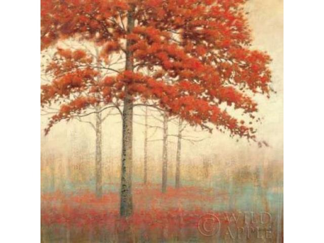 Autumn Trees II Poster Print by James Wiens (24 x 24)