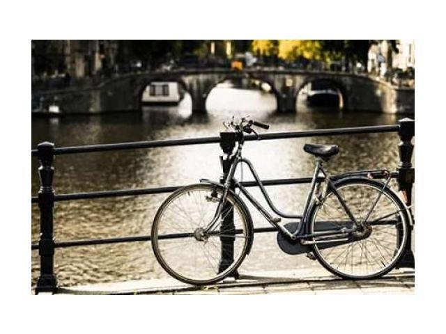Amsterdam Gray Bicycle Poster Print by Erin Berzel (12 x 18)