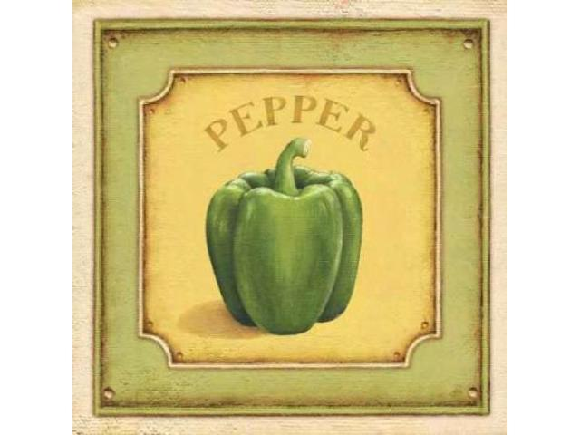 Pepper Poster Print by Daphne Brissonnet (12 x 12)