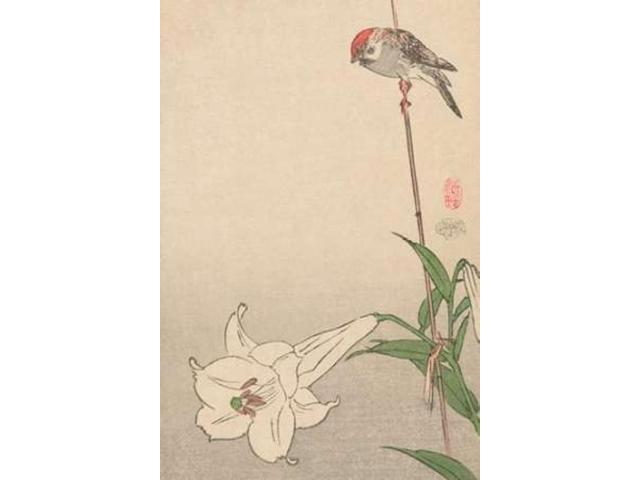 Small bird on lily plant. 1893 Poster Print by Baison  (12 x 18)