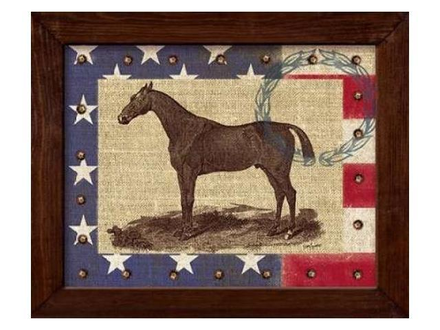 American Equestrian Poster Print by Sam Appleman (20 x 24)