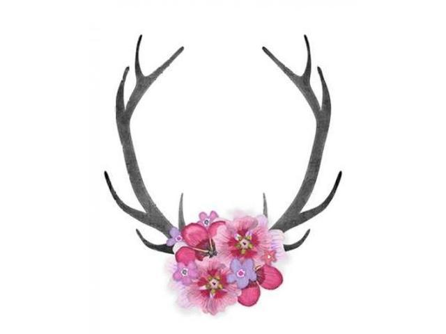 Antlers and Pink Flowers Poster Print by Amy Cummings (8 x 10)