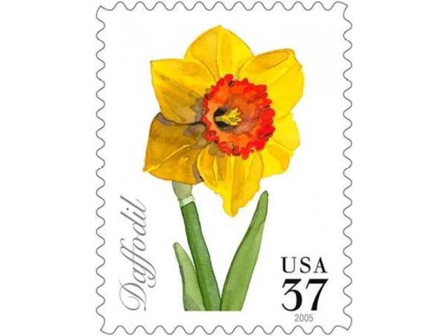 Daffodil 37 Poster Print by  US POSTAL SERVICE (22 x 28)