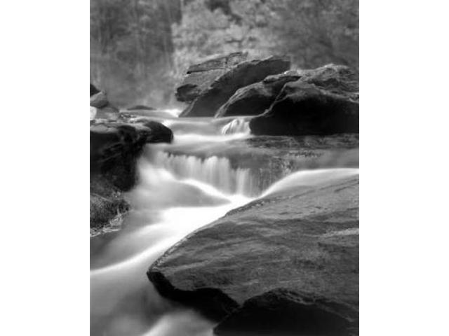 Moving Water IV Poster Print by Scott Larson (20 x 24)
