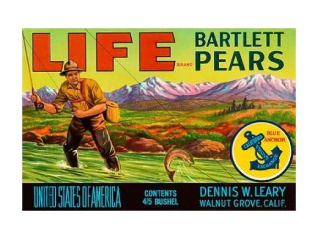 Life Brand Bartlett Pears Poster Print by Retrolabel  (12 x 18)