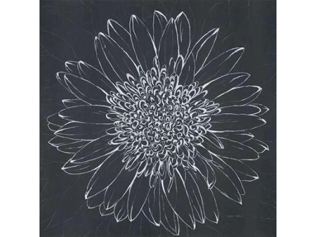 Chalk Bloom 2 Poster Print by Connor Adams (12 x 12)