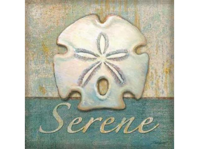 Serene Poster Print by Todd Williams (24 x 24)