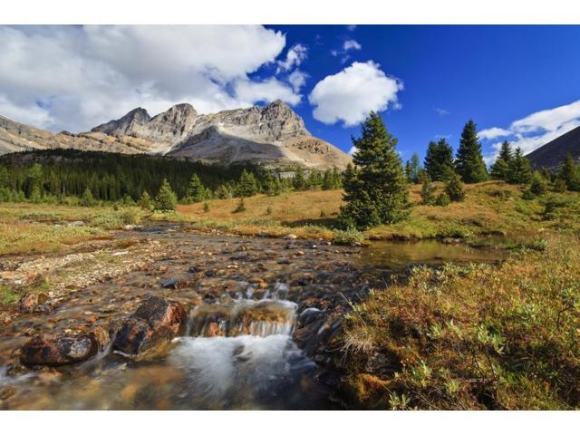 A Small Stream Enroute To Baker Lake Flows Through The Skoki Wilderness In Banff National Park Banff Alberta Canada Poster Print (18 x 12)