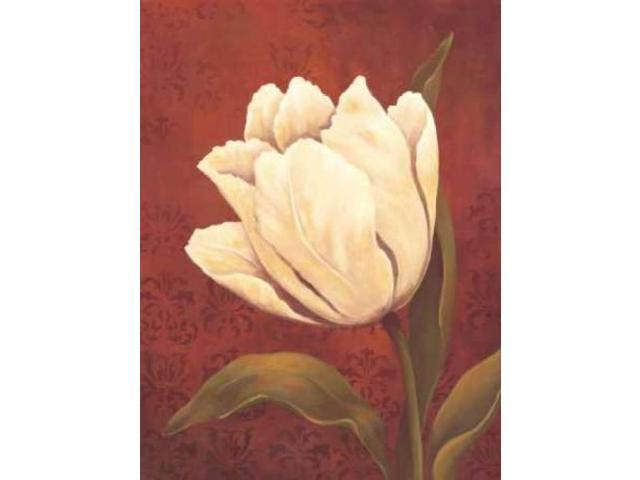 Tulip on Red Poster Print by Ella Belamar (18 x 24)