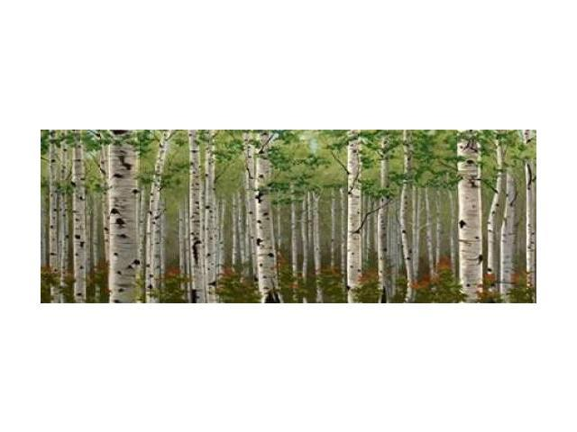 Summer Birch Forest Poster Print by Julie Peterson (24 x 48)