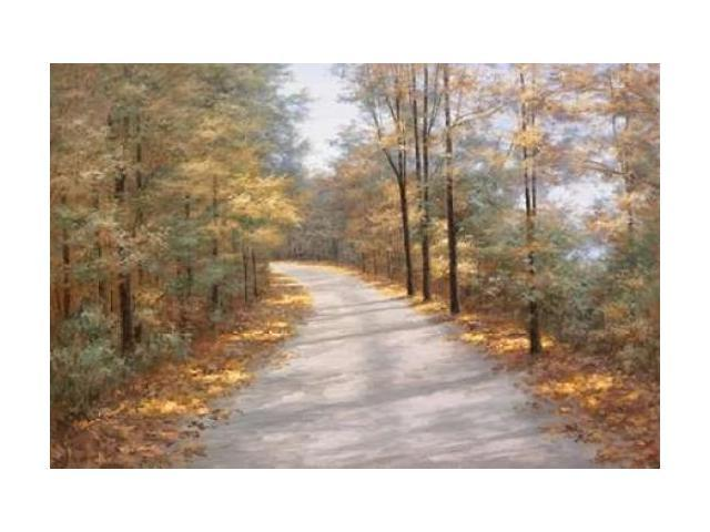 Walking in Fall Poster Print by Diane Romanello (20 x 28)