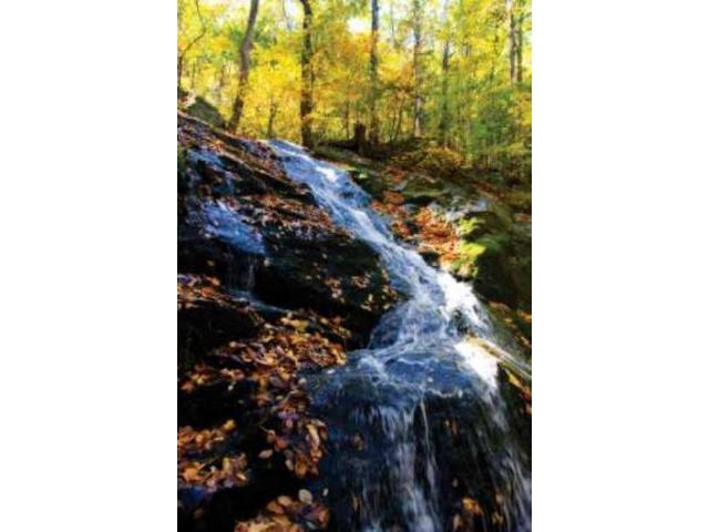 Autumn Waterfall I Poster Print by Alan Hausenflock (12 x 18)