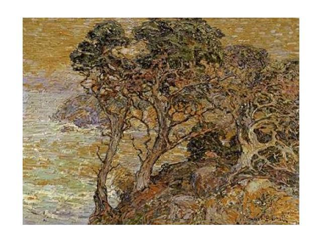 Point Lobos Monterey Coast Poster Print by  Franz Bischoff  (9 x 12)