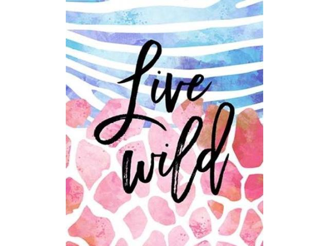 Live Wild Poster Print by Amy Cummings (8 x 10)