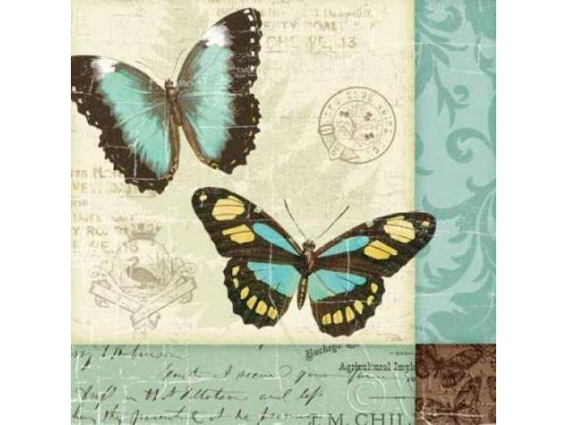 Butterfly Patchwork II Poster Print by  Pela Studio (24 x 24)