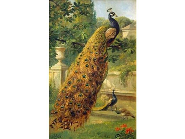 Peacocks In The Park Poster Print by  Olaf August Hermansen  (12 x 18)