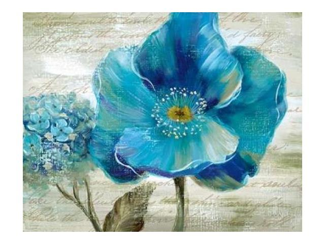 Blue Poppy Poem II Poster Print by  Nan (11 x 14)