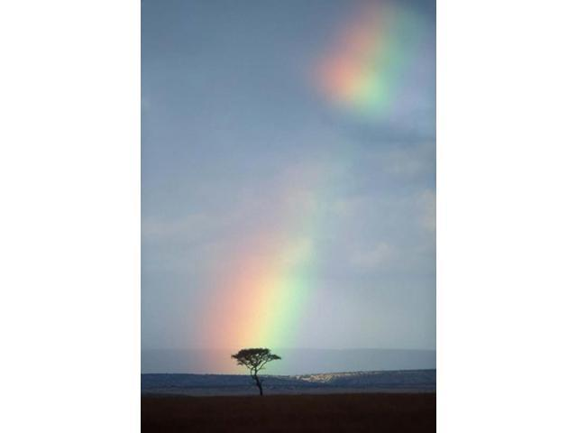 Rainbow Forms Amid Rain Clouds, Masai Mara Game Reserve, Kenya Poster Print by Paul Souders (24 x 35)