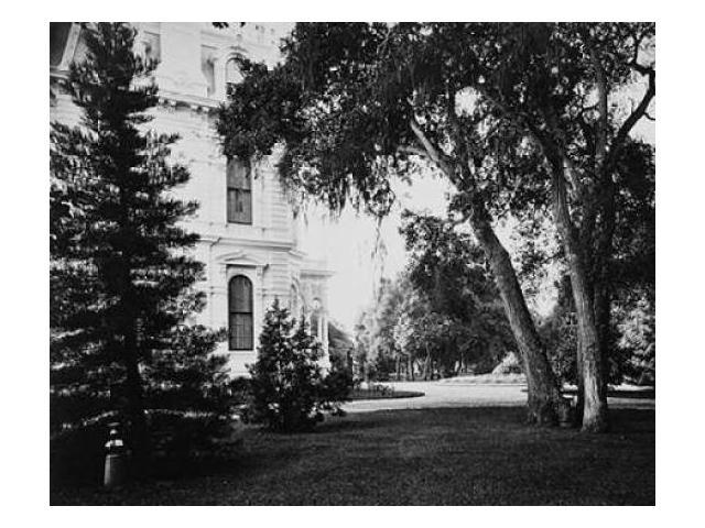 Thurlow Lodge - Lawn and House. From Barron Cluster. Black and white. Poster Print by Carleton Watkins (24 x 30)