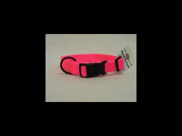 Hamilton Pet Company Adjustable Dog Collar, Hot Pink, 5/8 X 12-18 - FAS 12/18 HP