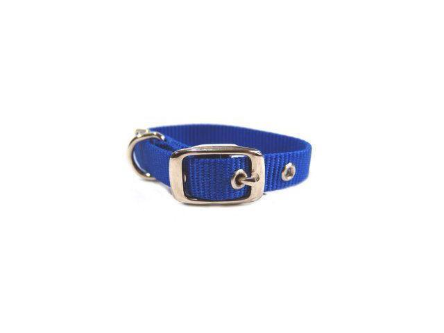 Hamilton Pet Company Single Thick Nylon Dog Collar, Blue, 5/8 X 14 - ST 14BL