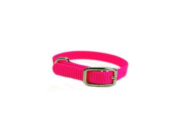 Hamilton Pet Company Single Thick Nylon Dog Collar, Hot Pink,3/8 X 10 - STE 10HP