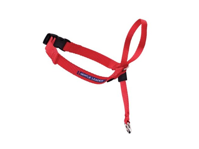 Premier Gentle Leader Head Collar - Red - Petite
