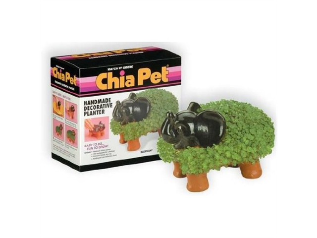 Chia Pet Handmade Decorative Planter- Elephant