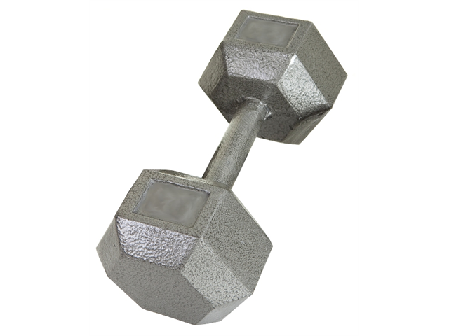 USA Sports Individual 100lb Cast Iron Hex Dumbbell by Troy Barbell