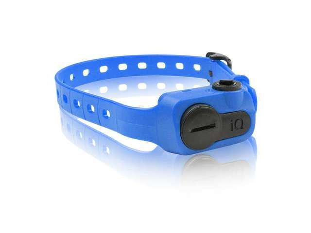 Dogtra is No Bark Collar Blue - IQ-BARK-BLU