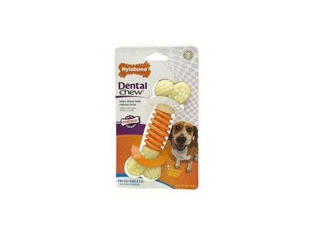 Nylabone Proaction Dog Dental Chew, Medium NDD502P NYLABONE, TFH