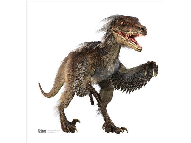 Raptor-Large Standup