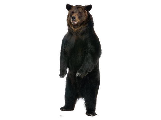 Brown Bear Cardboard Standup