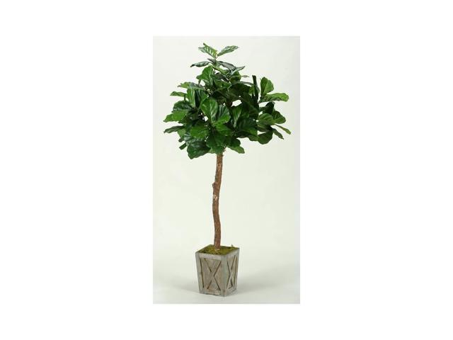 6 ft. Fiddle Leaf Fig Tree in Weathered Wood Box Planter