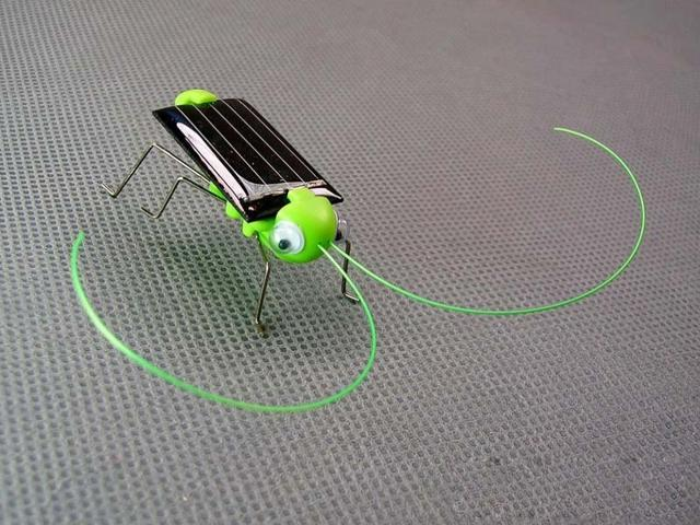 Green solar grasshopper insect educational toys play toys promotion gift