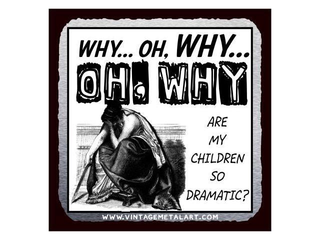 Why Are My Children So Dramatic Mini Vintage Tin Sign