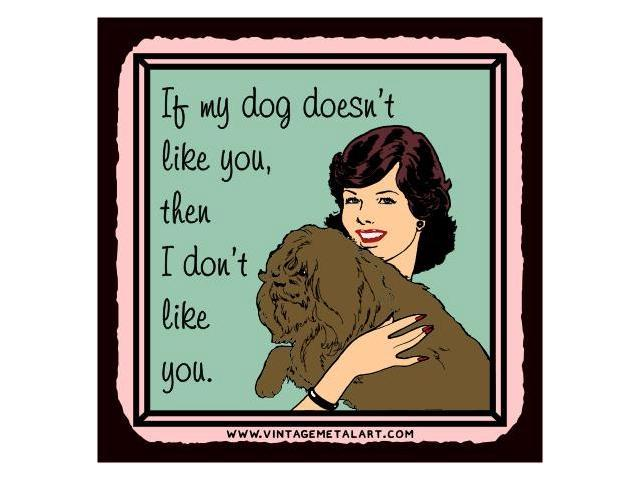 If My Dog Doesn't Like You I Don't Like You Mini Vintage Retro Tin Sign