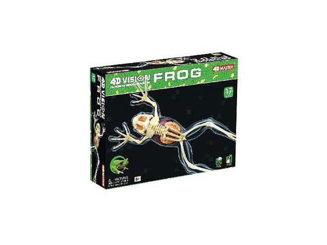 4D Vision Full Skeleton Frog Model