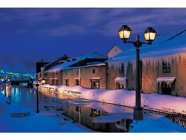 1,000 Pieces Jigsaw Puzzle - Otaro Canal at Night, Japan; Glow-in-the-Dark.